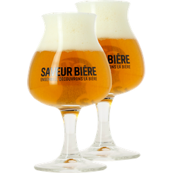 Beer glasses - 2 Saveur Bière balloon glasses - 15 cl