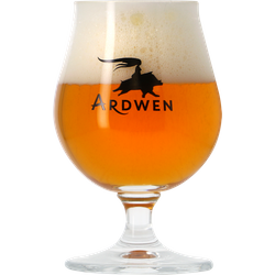 Beer glasses - Glass Ardwen - 25 cl