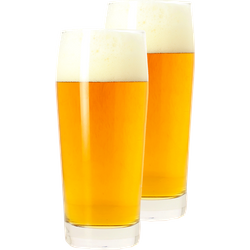 Beer glasses - Glass Willi - 50 cl