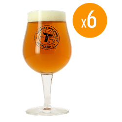 Beer glasses - Pack of 6 Glasses Tempest - 25 cl