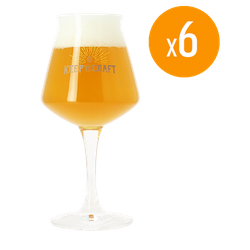 Verres à bière - Pack de 6 Verres Teku keep it Craft - 25 cl