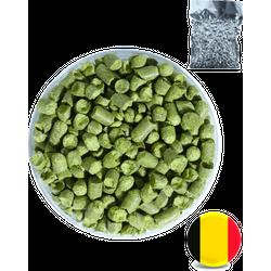 Houblons - Houblon Brewers Gold (BE) en pellets - récolte 2019