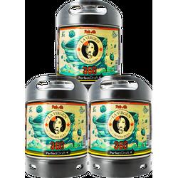 Fûts de bière - Pack 3 Fûts 6L La Virgen 360