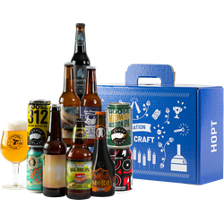 Accessori e regali - Cofanetto Craft Beer Beginners