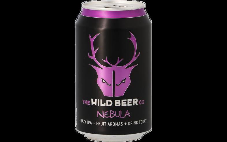 Flaskor - Wild Beer Nebula