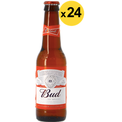 Bottiglie - Big Pack Bud x24