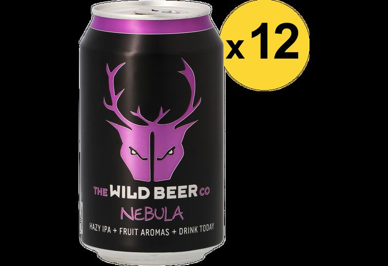 Pack de bières - Pack Wild Beer Nebula - 12 bières