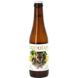 Bottled beer - Lupulus Blonde Triple