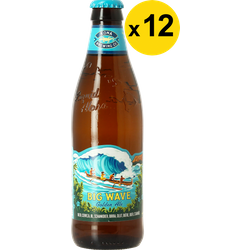 Big packs - Kona Brewing Big Wave Golden Ale 35.5cl (12 stuks)