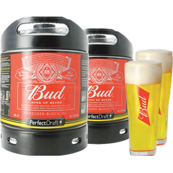Fûts de bière - Pack 2 fûts 6L Bud + 2 verres Bud offerts