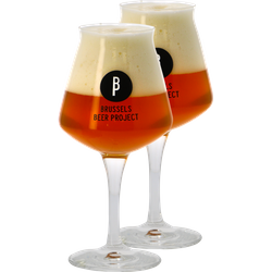 Beer glasses - 2 Glasses Teku Brussels Beer Project - 33 cl