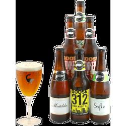 Gåvor - Assortiment Goose Island - 6 bières - 1 verre