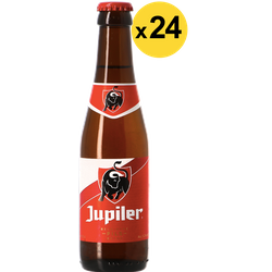 Big packs - Jupiler 24 Pack