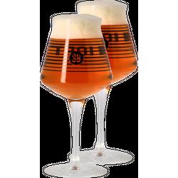 Verres à bière - Pack 2 verres Teku Saveur Bière 25 cl