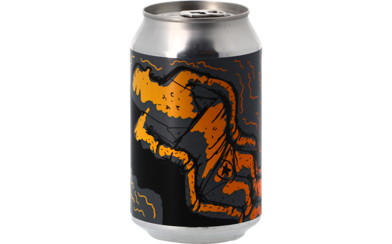 Bottled beer - Lervig Toasted Maple Stout