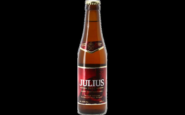 Bouteilles - Hoegaarden Julius