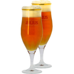 Beer glasses - Pack 2 Verres Hoegaarden Julius 33cl