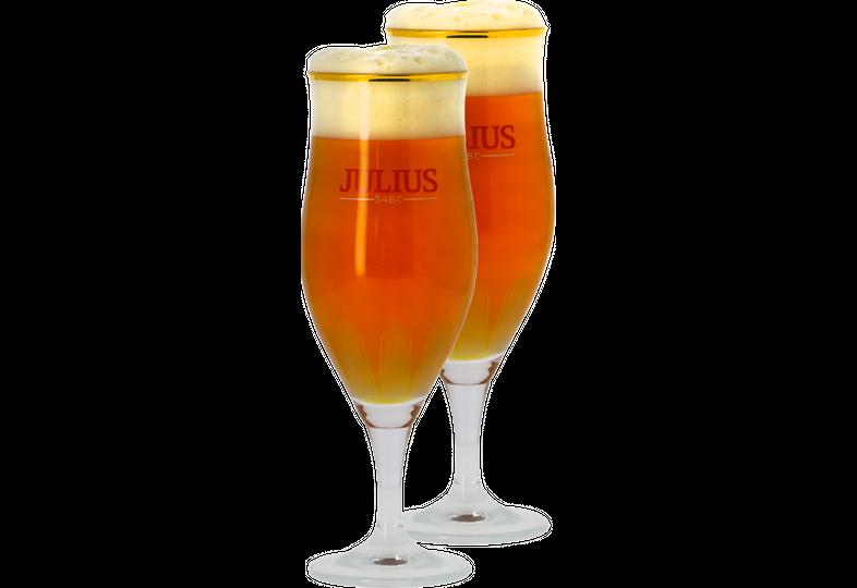 Verres à bière - Pack 2 Verres Hoegaarden Julius 33cl