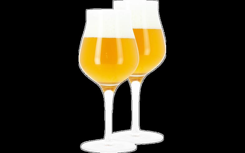 Bicchieri - 2 Bicchieri da Degustazione - 42cl