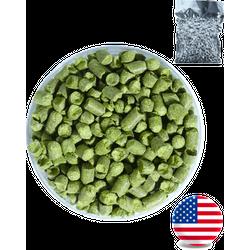 Houblons de brasserie - Houblon Mosaïc (11%) USA en pellets T90 - récolte 2020