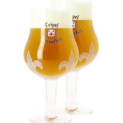 Beer glasses - 2 Karmeliet 30cl glasses