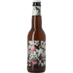 Bouteilles - To Øl Blossom American Wheat Ale